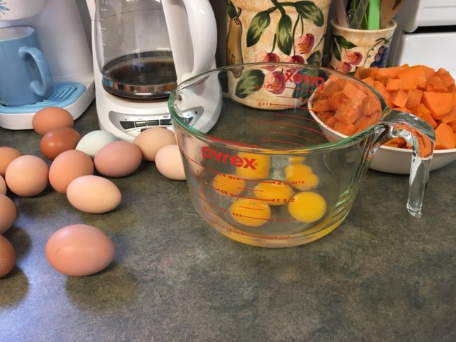 Free-Range Chicken Eggs (dozen) - Image 4