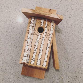 Downy Woodpecker Nest Box - Birch