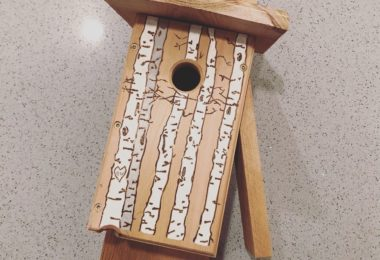 Downy Woodpecker Nest Box - Birch