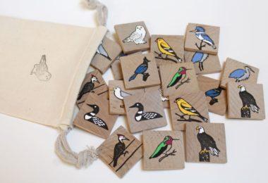birdscolour3