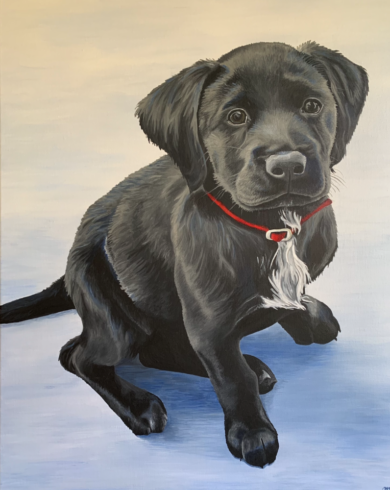 Pet Portrait 1